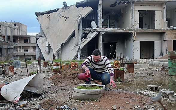 A man is watering a little garden in the midst of war in Syria.