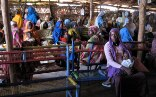 Women flee from south Sudan