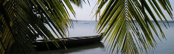 Image of a canoe floating on water with palm leaves in the foreground