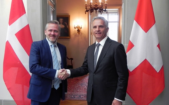 The head of the FDFA, Didier Burkhalter, discusses with the Danish foreign minister, Anders Samuelsen, specific possibilities for strengthening cooperation between their countries