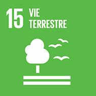 17 objectifs de développement durable
