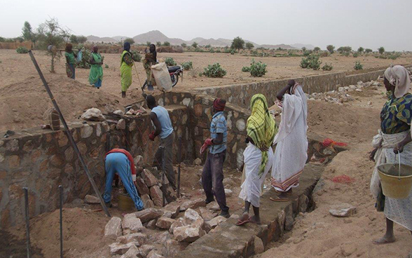 Men and women building weirs in the Chadian Sahel.