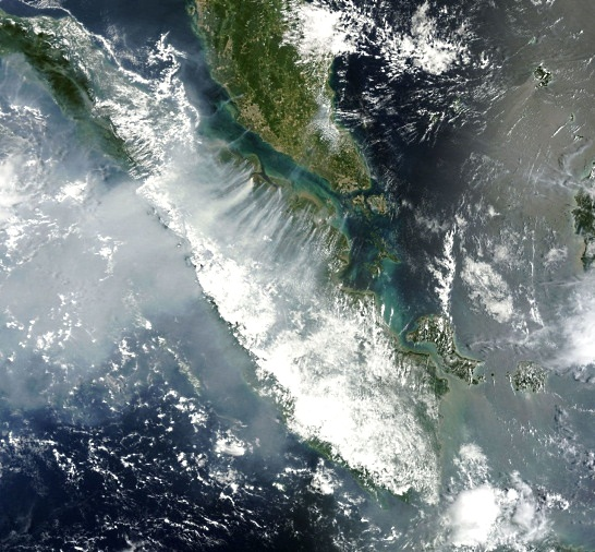 Satellite image showing plumes of smoke rising from forest fires over Sumatra.