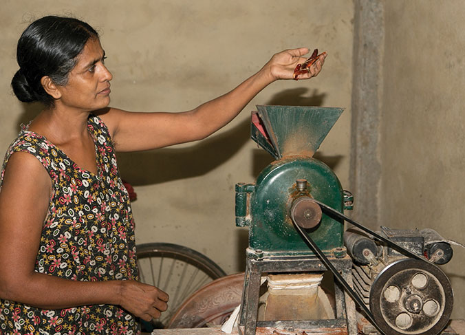 Sriyani has found a new occupation grinding spices after the tsunami destroyed the rice mill she owned with her husband. The couple have three children who are studying, which makes Sriyani look to the future with pleasure. © R.H. Samarakone/SDC