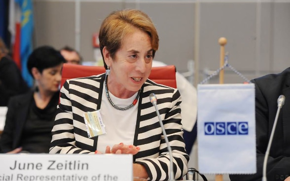 The Special Representative of the Swiss Chairmanship in Office on Gender Issues, June Zeitlin, chairing the High Level Opening Panel of the First Ever Gender Equal Review Conference