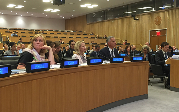 The abolition of the death penalty and strengthening the human rights pillar at the United Nations were the key issues raised by Federal Councillor Didier Burkhalter.