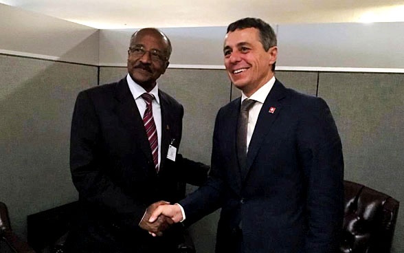 Federal Councillor Ignazio Cassis meets Eritrean Foreign Minister Osman Mohammed Saleh